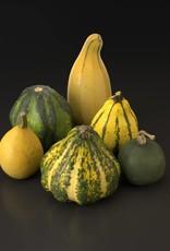 3D model Gourd