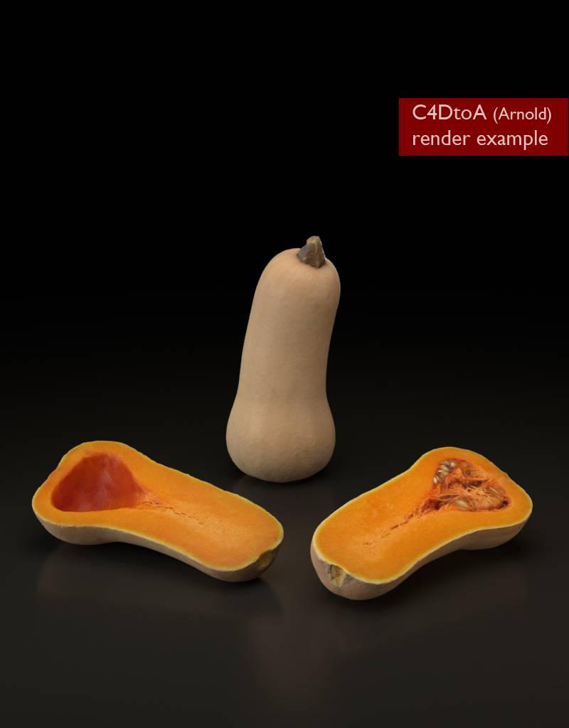 3D model Butternut pumpkin-squash