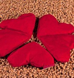 Kersenpitje Little haert red