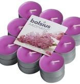Bolsius kaarsen Lilac blossom fragrance tea light 4 hours