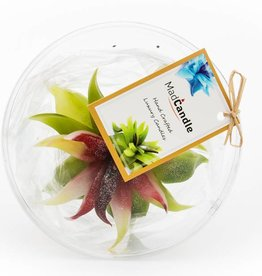 MadCandle Flower candle medium Green Tea