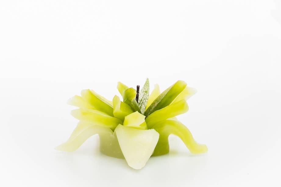 MadCandle Flower candle medium Apple