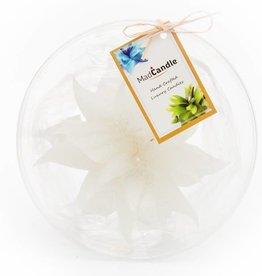 MadCandle Bloemenkaars groot jasmijn