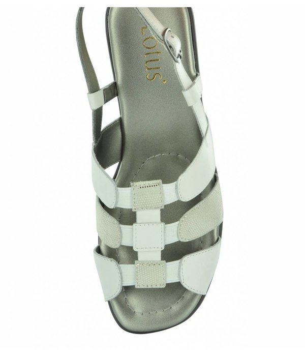 Lotus Lantic 20142 Women's Comfort Sandals