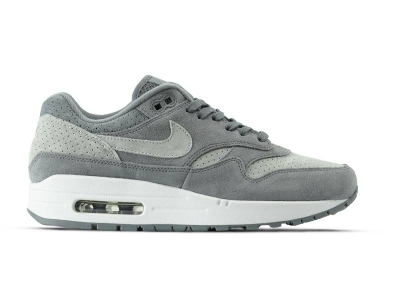 Air Max 1 Premium Cool Grey Wolf Grey White 875844 005