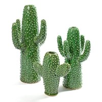 Cactus Vaas Middel