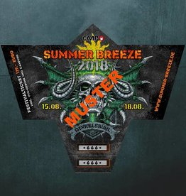 SUMMER BREEZE 2018 - DINKELSBÜHL (*)