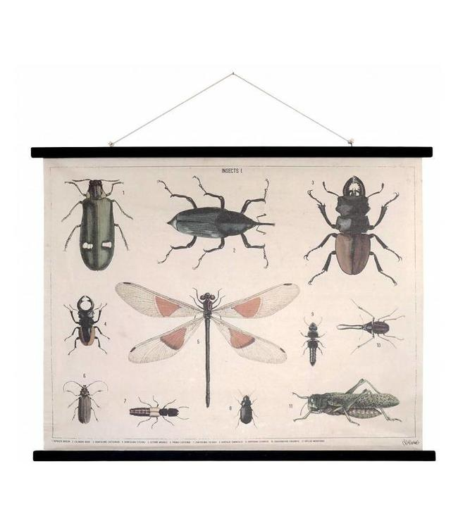 HK Living HKliving Schulwandkarte Insekten XL