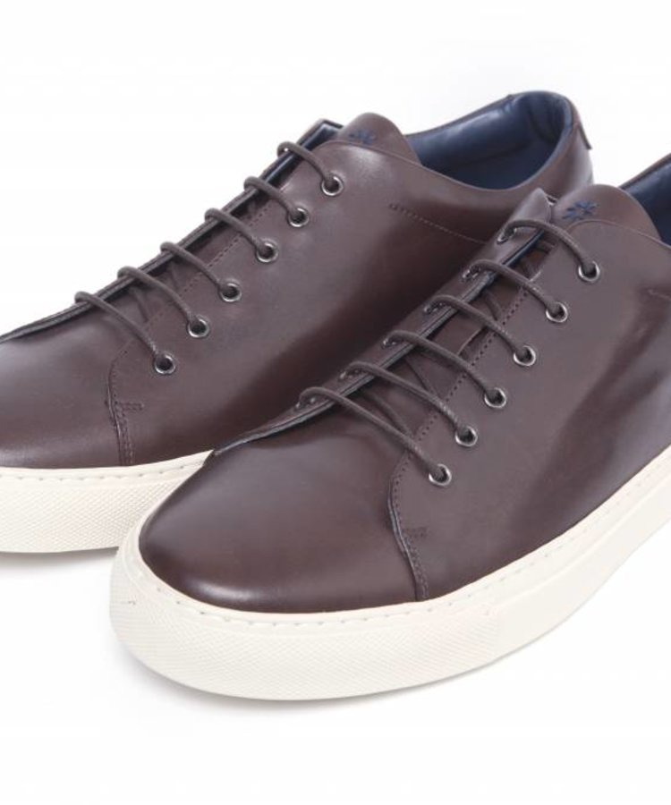 ANDREA ZORI LOW TOP SUEDE LEATHER SNEAKER IN BROWN WITH CREME SOLE
