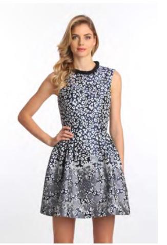 Frock N Fabulous Taille dress Badgley Mischka Bell