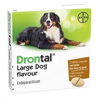 Bayer Large dog