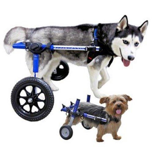 Walkin Wheels Rolstoel hond