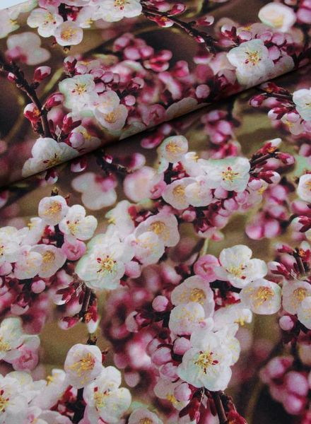 viscose jersey - spring blossom