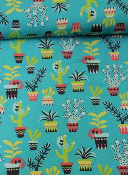 cactus hilco - cotton