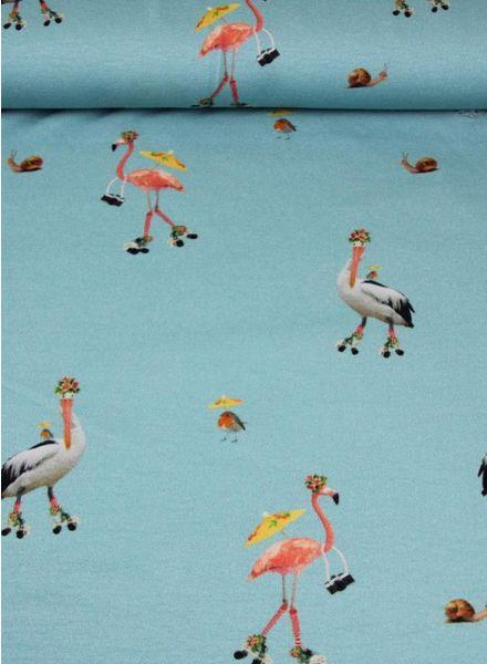 skating flamingos and storks