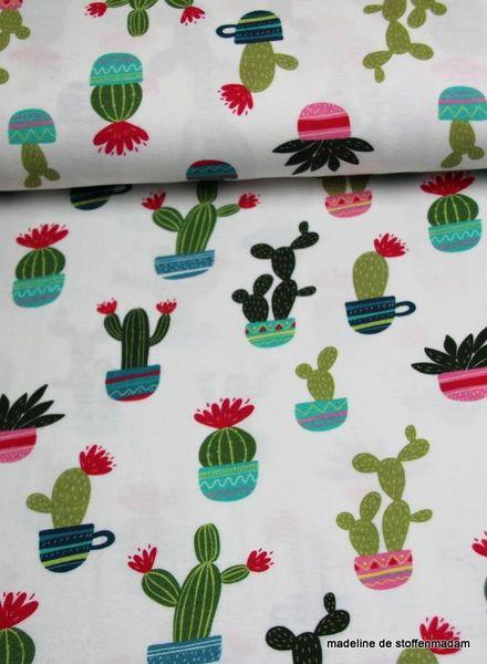 cactus fun white