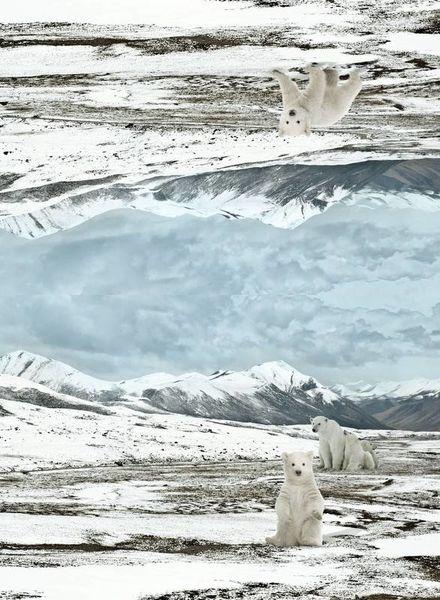 ijsbeer paneel -tricot