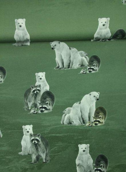 ijsberen en wasberen groen - tricot