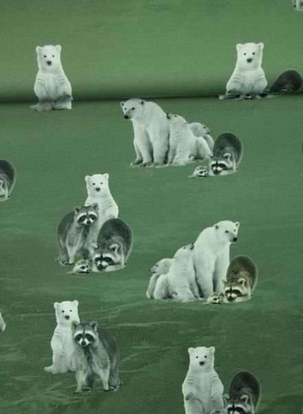 polar bears and raccoons  green- tricot