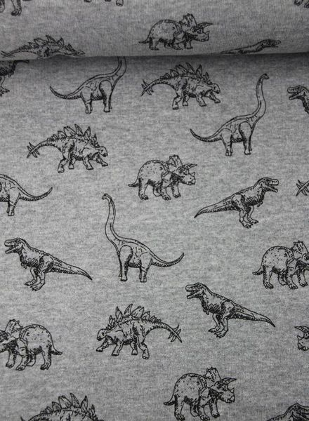 dinos dream grey –  sweater