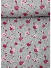 flamingo -  french terry