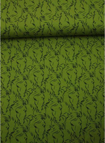 green horses - jersey