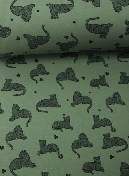 panter khaki - sweat fabric
