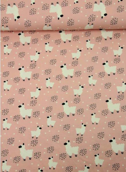 roze schaapjes - tricot