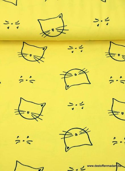 kitty cat yellow jersey