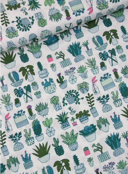 cactussen feestje -  katoen