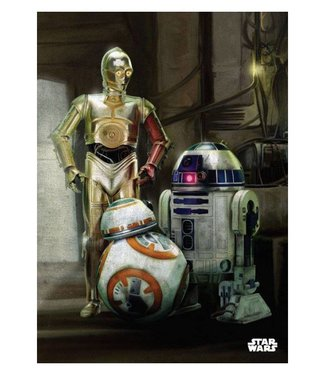 PosterPlate Star Wars: Droiden Metall Poster