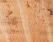 Tineo, indischer Apfelbaum