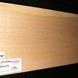 RIEGELAHORN, Gitarrenkorpus, 550 x 240 x 53 mm, 4,6 kg