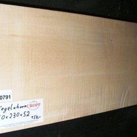 RIEGELAHORN, Gitarrenkorpus, 550 x 230 x 52 mm, 4,8 kg