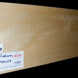 RIEGELAHORN, Gitarrenkorpus, 550 x 180 x 57 mm, 3,9 kg