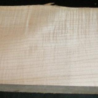 Ahorn, RIEGELAHORN, Gitarrenkorpus, 550 x 210 x 50 mm, 5,3 kg