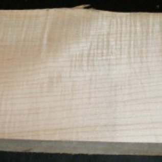 Sycamore fiddleback, Guitar-Body, 550 x 210 x 50 mm, 5,3 kg