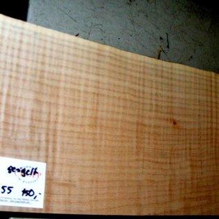 """Ahorn, amerik. SPITZAHORN, """"Soft Maple"""", geriegelt, 557 x 202 x 55 mm,  3,6  kg, Acer macrophyllum"""