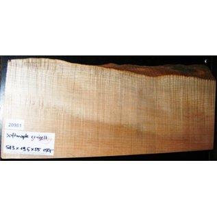 """Ahorn, amerik. SPITZAHORN, """"Soft Maple"""", geriegelt, 543 x 185 x 55 mm, 3,3  kg, Acer macrophyllum"""