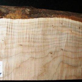 """SPITZAHORN, """"Soft Maple"""", geriegelt, 556 x 190 x 58 mm, 4,3  kg"""