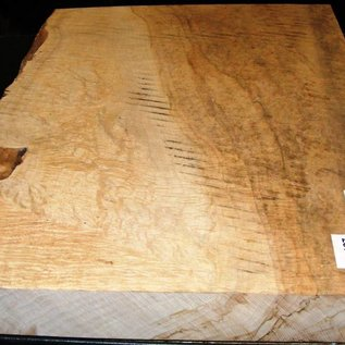 Sycamore fiddleback, 565 x 410 x 55 mm, 8,7 kg, with heartwood