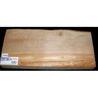 Ahorn, RIEGELAHORN, Gitarrenkorpus, 550 x 220 x 55 mm, 5,6 kg