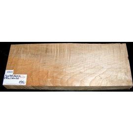 MUSCHELAHORN, Korpus, 550 x 210 x 50 mm