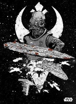 Star Wars Rebel Fleet - Displate
