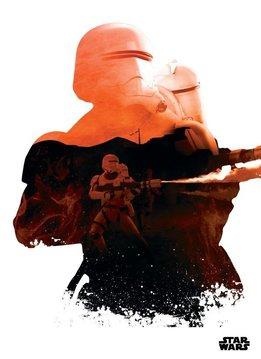 Star Wars Trooper - Displate