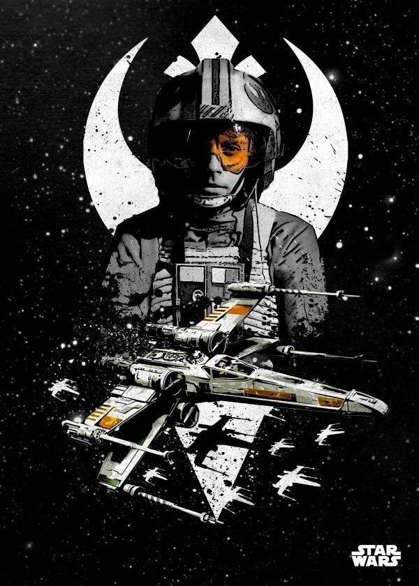 Star Wars X-Wing - Star Wars Pilots Displate