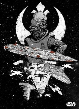 Star Wars Rebel Fleet - Star Wars Pilots Displate