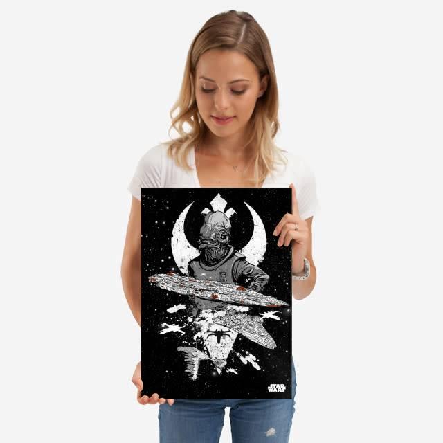 Star Wars Rebel Fleet - Star Wars Pilots Displate