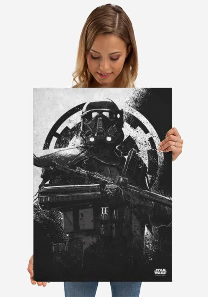 Death Trooper    Rogue One Gray Morality