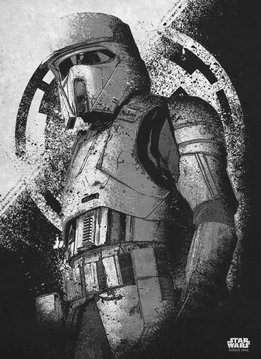 Star Wars Scarif ShoreTrooper - Rogue One Gray Morality - Displate